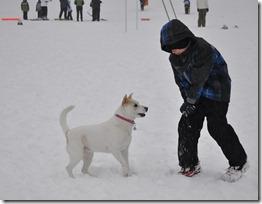 Snow 015