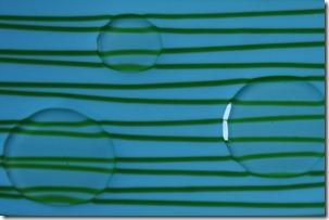 Glasswork 070