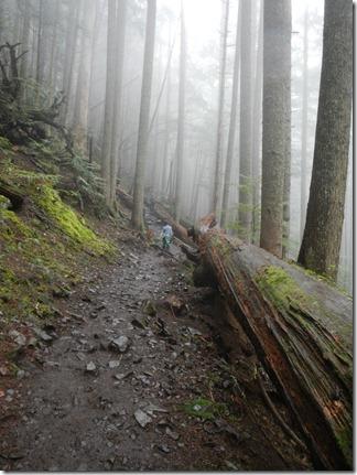 Mount Si Hike 022
