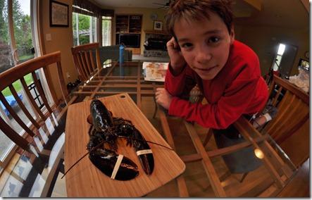 Lobster Pasta 013