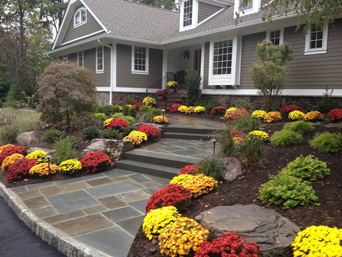 professional landscaping companies