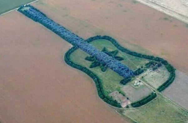 7000 trees guitar 3