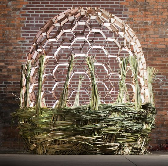 basket shaped installation fills itself with plant