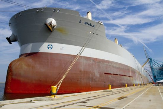 biggest oil skimmer world a whale