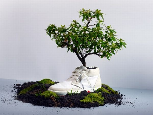 Biodegradable fashion items