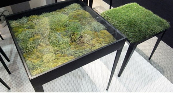 Dry Moss Table