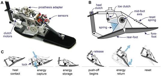 energy foot 3