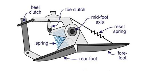 energy foot 4