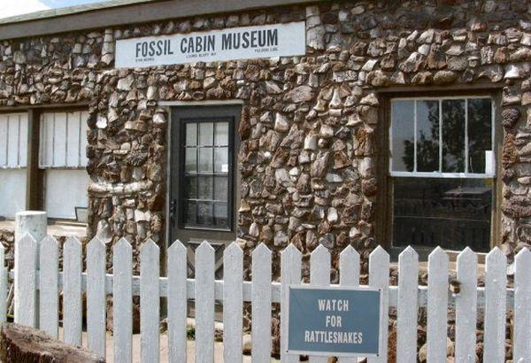 fossil cabin2 550x376