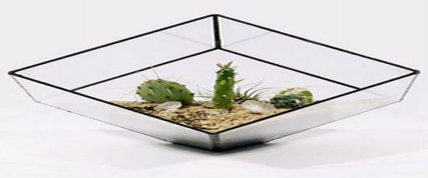 Glass planters