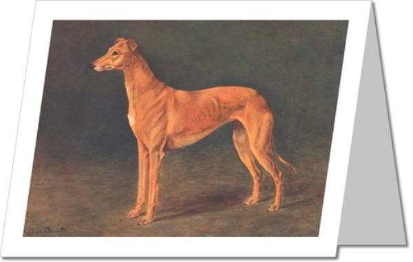 Greyhound Greeting Cards