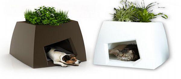 Indoor Kennels / Planters