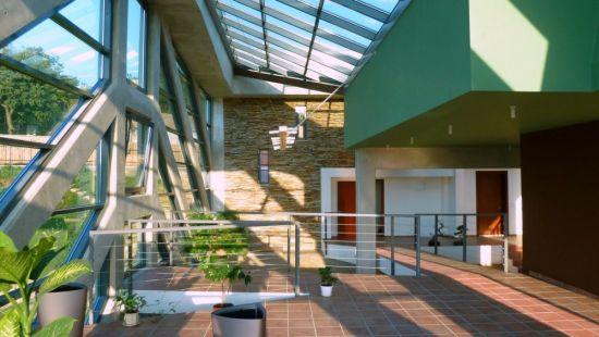 large sustainable tree house 12