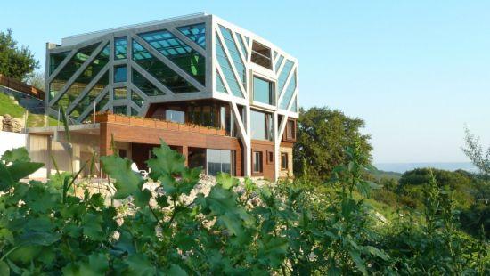 large sustainable tree house 16
