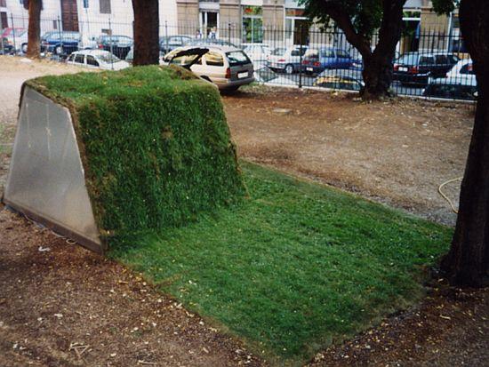 lawn house 1