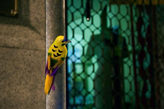 luzinterruptus urban nest light art installation 5