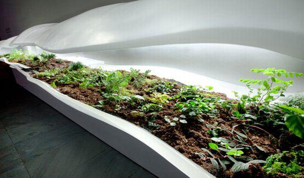 Modern Indoor Planter