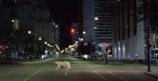 nissan polar bear ad 4