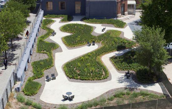 odonnell garden1