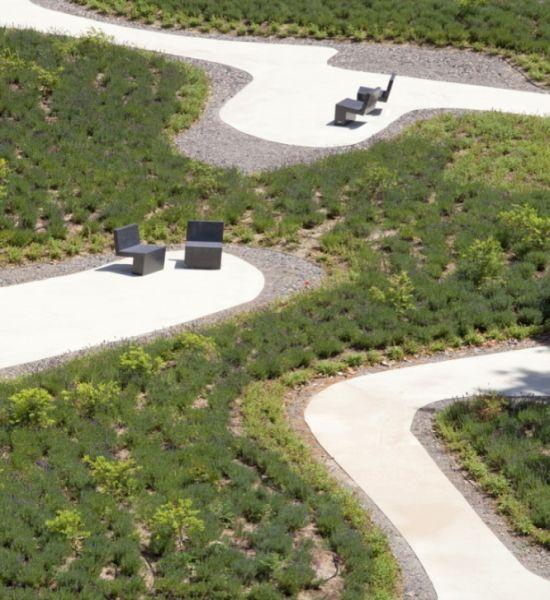 odonnell garden2