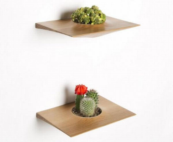 Plant Pods by Domenic Fiorello 2
