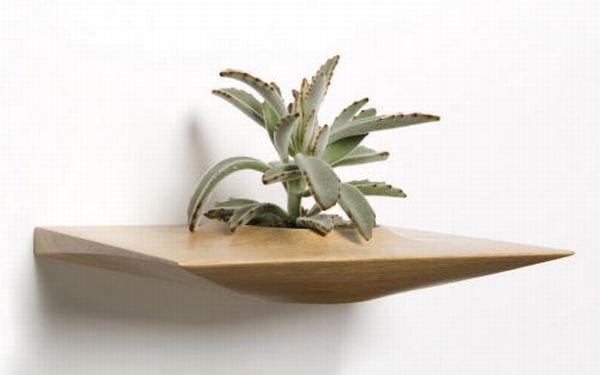 Plant Pods by Domenic Fiorello 4
