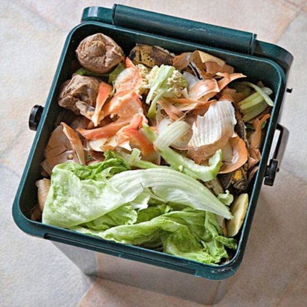 Recycle kitchen waste