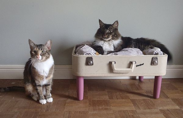 Recycled Pet Bed