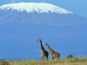 snow capped mount kilimanjaro