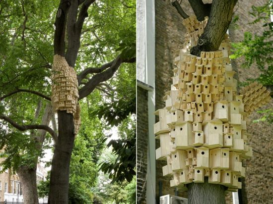 spontaneous city in the tree of heaven 2