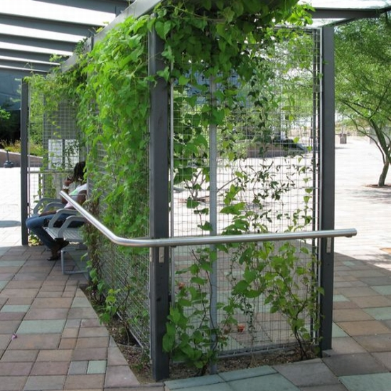 tempe transit center4