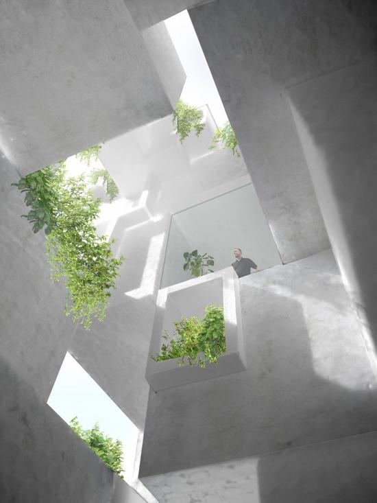 tree ness house connects organic nature with resid