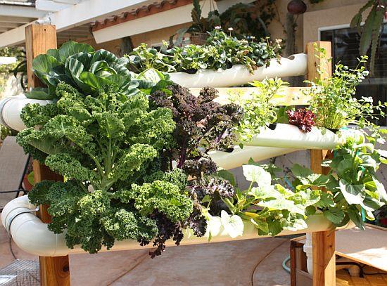 vertical earth gardens 5