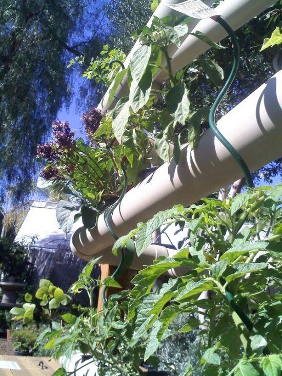 vertical earth gardens 9