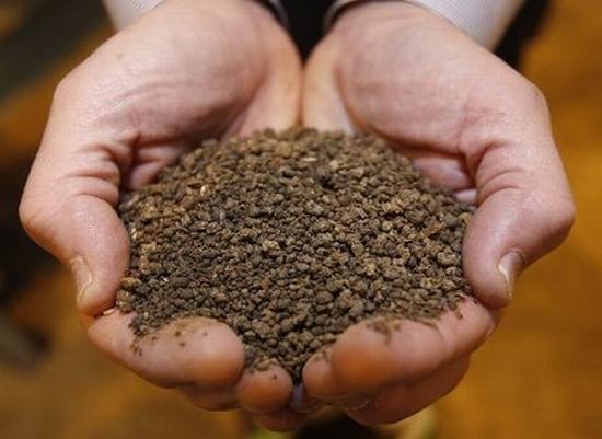 waste food fertilizer