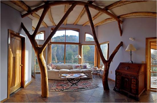 whole tree house3