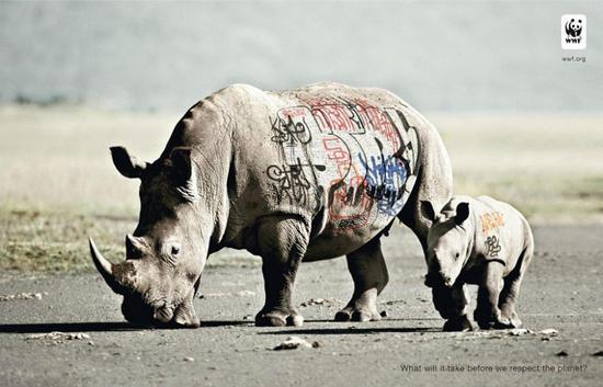 wwf graffiti rhinoceroses