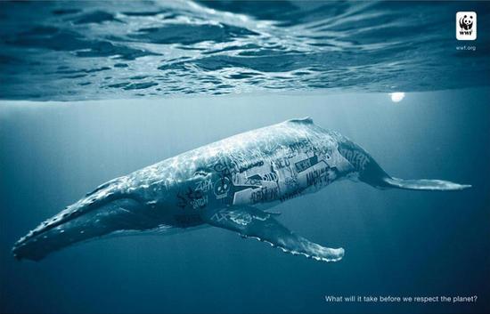 wwf graffiti whale