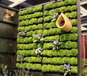 wood-pallet-garden