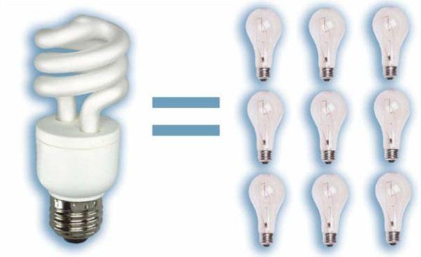 cfl-light-bulbs-mercury