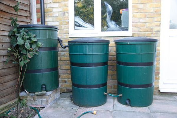 Harvest rainwater in containers