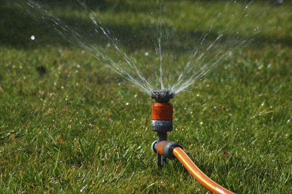 Control watering