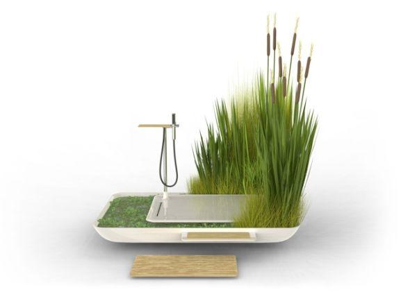Phyto-purification bathroom