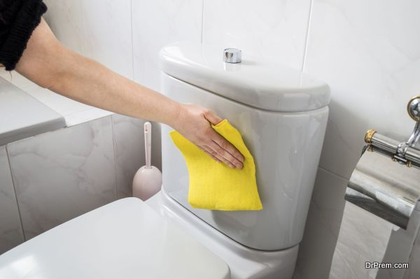 Toilet cleaning (2)