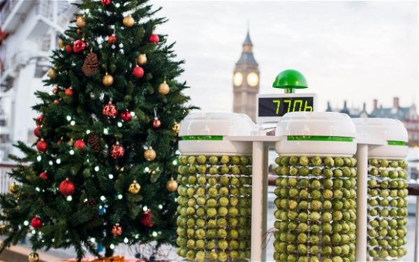 Brussels sprouts powered Christmas tree lights