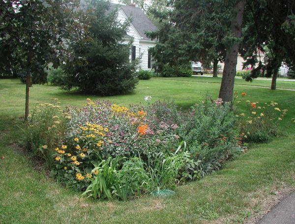rain garden (2)