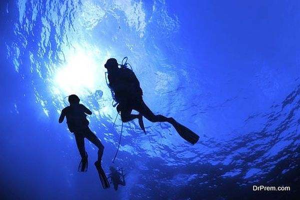 Silhouette of swimming scuba divers on blue water background