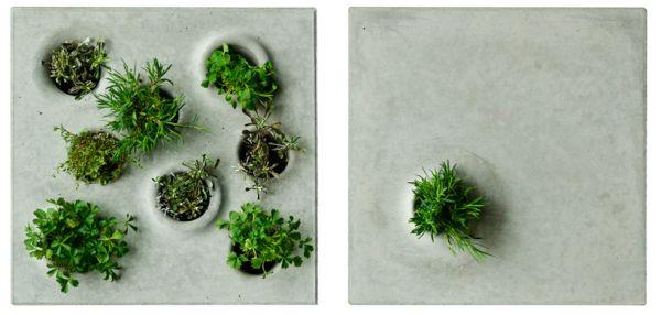 Vegetation stones  3