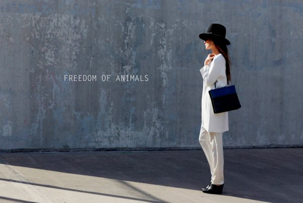 Freedom of Animals