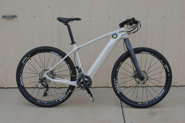 Pioneer Carbon Bike